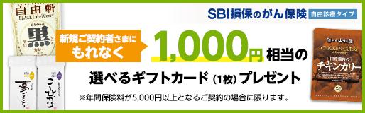 新規ご契約さまにもれなく1,000円相当の選べるギフトカード(1枚)プレゼント!